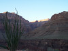 "Grand Canyon : ""Sometimes I do get to places just when God's ready to have somebody click the shutter.""  ~Ansel Adams"